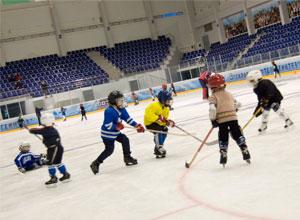 Секция хоккея